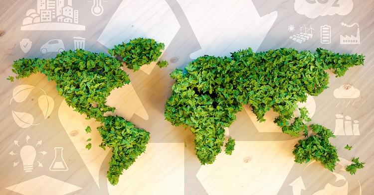 Hazai fenntarthatósági ügynökség kezében a TerraCycle licensze